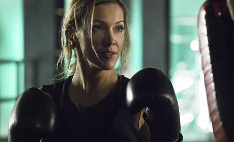 Put 'em Up - Arrow Season 4 Episode 11
