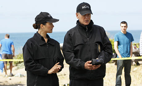 NCIS Scoop on Ray, Season Finale Arc