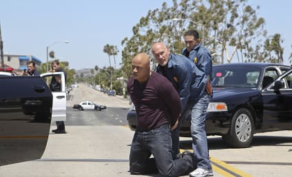 NCIS Los Angeles Season 6 Episode 6 Review: Seal Hunter