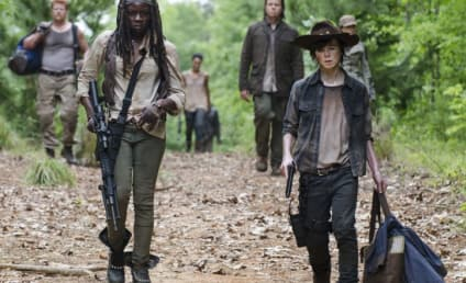 The Walking Dead Season 5 Episode 2 Review: Strangers