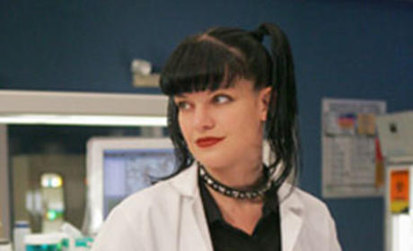 Pauley Perrette to Guest Star on NCIS: Los Angeles