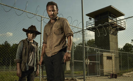 The Walking Dead Season 3 Report Card: B+