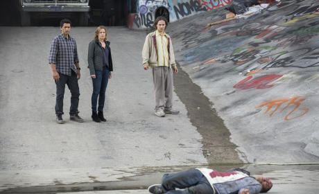 The Walking Dead Companion Series First Look