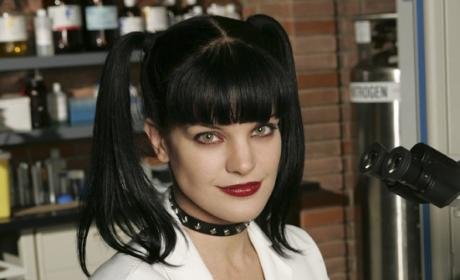 NCIS Re-Signs Michael Weatherly, Sean Murray and Pauley Perrette For Seasons 10-11