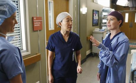 Grey's Anatomy Review: What's the Point?