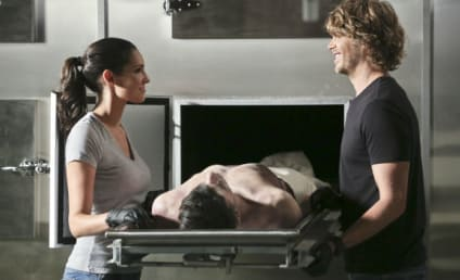 NCIS Los Angeles Q&A: Eric Christian Olsen Teases Big Densi Scenes, Hetty Trouble