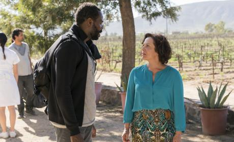 Fear the Walking Dead Season 2 Episode 6 Review: Sicut Cervus