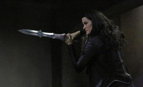 Agents of S.H.I.E.L.D. Season 2 Episode 12 Picture Preview: The Lady Returns