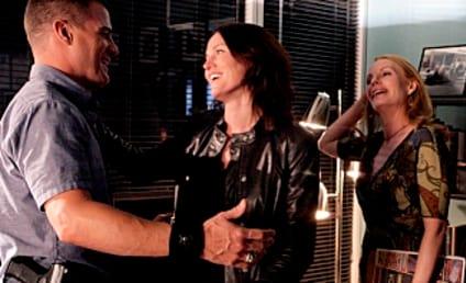 Jorja Fox: Remaining on CSI