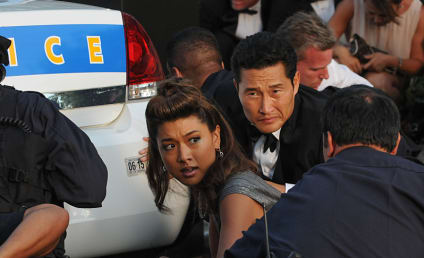 Hawaii Five-0 Season 5 Episode 11 Review: Stolen