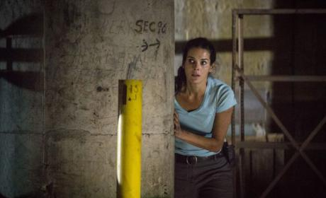 Rizzoli & Isles: Watch Season 5 Episode 8 Online