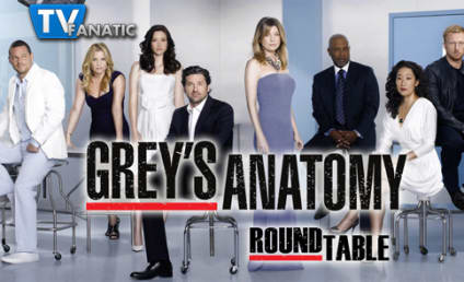 "Grey's Anatomy Round Table: ""Walking on a Dream"""