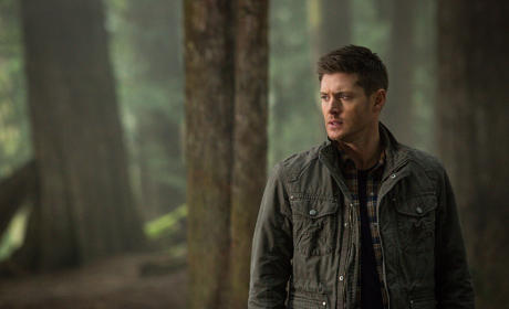 Supernatural Picture Preview: Into the Woods
