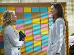 Arizona and Herman - Grey's Anatomy Season 11 Episode 13