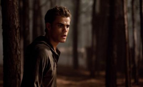 The Vampire Diaries Review: Bewere of Wolves!