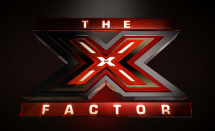 The X Factor Premieres: What Did You Think?