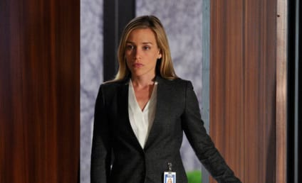 Piper Perabo to Go On NBC