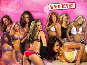 wwe_divas_wallpaper__p_by_tscagonic.jpg