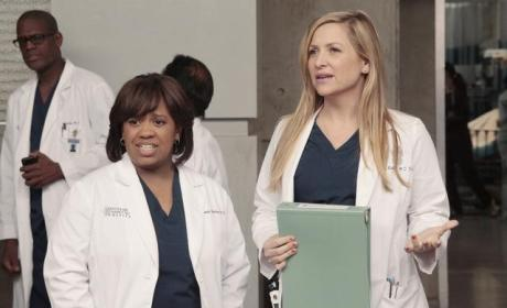 Arizona and Bailey