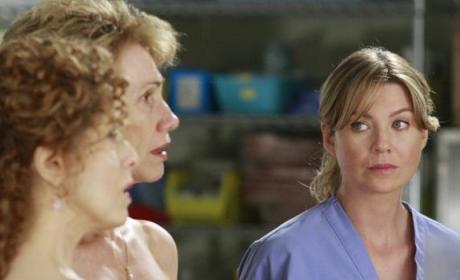 Meredith Looks On
