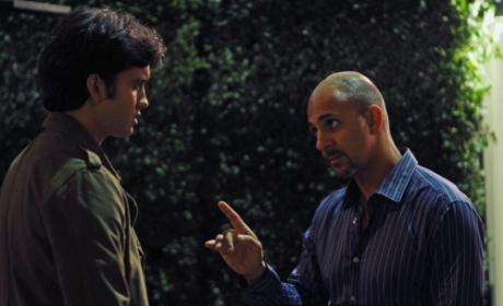 Navid vs. Amal