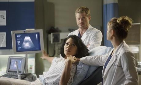 Grey's Anatomy Review: Lesbian Lover. Baby Daddy.