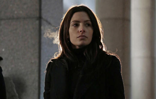 Sarah Shahi on Person of Interest