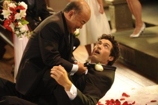 Fairly Legal Wedding