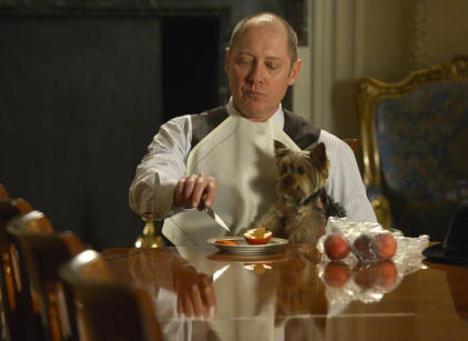 Watch The Blacklist Season 1 Episode 22 Online