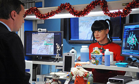 "NCIS Sneak Peek: ""Newborn King"""