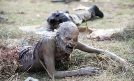 The Walking Dead: Watch Season 5 Episode 6 Online