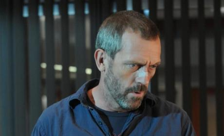 Hugh Laurie to Direct an Episode of House