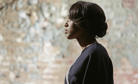 Scandal Season 4 Episode 20 Review: Bark, Bite or Both?