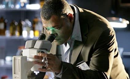 CSI Season Finale Spoilers: Look Out, Langston!