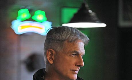 Mark Harmon as Leroy Jethro Gibbs