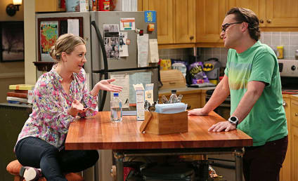 The Big Bang Theory: Watch Season 7 Episode 21 Online