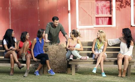 The Bachelor Season 19 Episode 3 Review: Jimmy Kimmel Love Connection