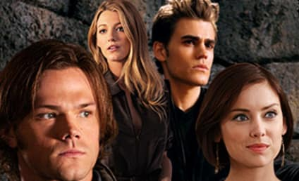The CW Picks Up 90210, Gossip Girl, The Vampire Diaires and More