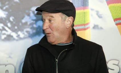 Report: Robin Williams Considering David E. Kelley Comedy Project