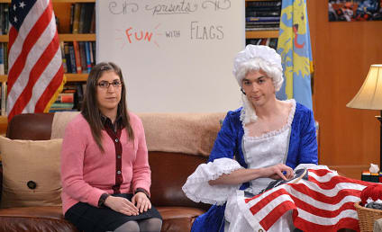 The Big Bang Theory Season 8 Episode 10 Review: The Champagne Reflection