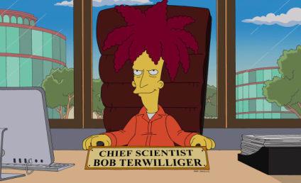 The Simpsons: Watch Season 25 Episode 12 Online
