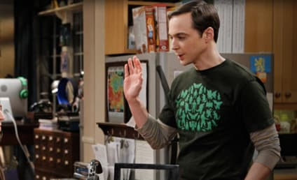 The Big Bang Theory Review: Vaporub, Bath or Spanking?