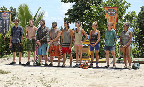 Another Immunity Challenge