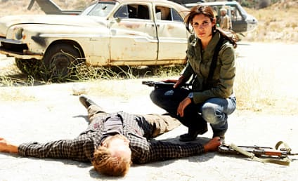 "NCIS: Los Angeles Review: ""Borderline"""