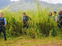 Hawaii Five-0 Season 5 Episode 13