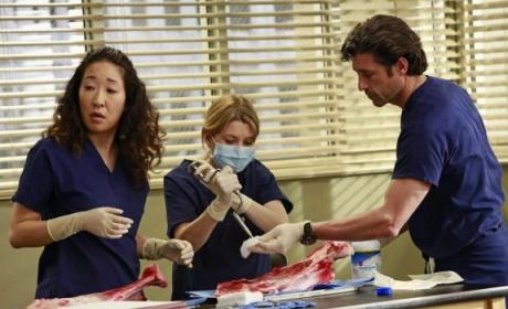 Cristina and Mer at Work