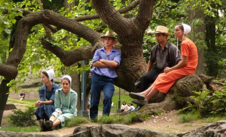Breaking Amish Cast