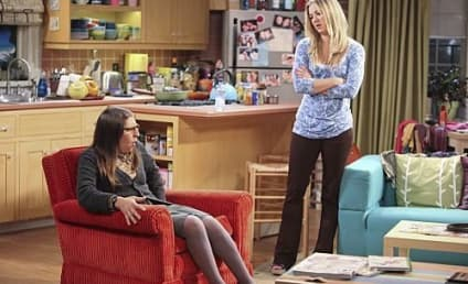 """The Big Bang Theory Review: """"The Infestation Hypothesis"""""""
