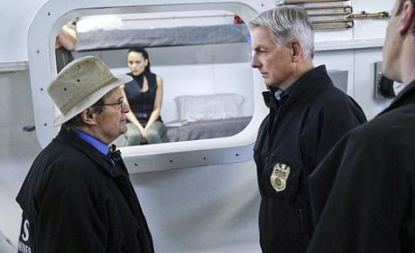 Watch NCIS Online: Season 13 Episode 14
