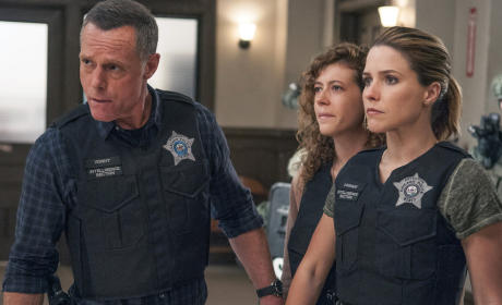 Chicago PD Season 3 Episode 3 Review: Actual Physical Violence